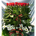 S.Korea Birthday/Anniversary S.Korea,,S.Korea:70 Rose Basket