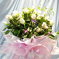 S.Korea Opening Ceremony S.Korea,,S.Korea:White Rose`s Love