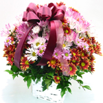S.Korea Love & Romance S.Korea,,S.Korea:Chrysanthemum Basket