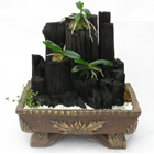 S.Korea Plants (air purification) S.Korea,,S.Korea:Charcoal-2