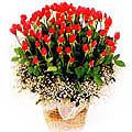 S.Korea Roses S.Korea,,S.Korea:100 rose basket