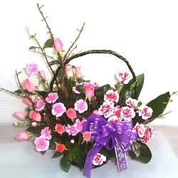 South Korea Flowers South Korea flower South Korea florists :Carnation Basket-ab