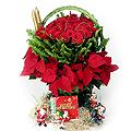 S.Korea Arrangement (Basket) S.Korea,,S.Korea:Christmas Rose Basket-1