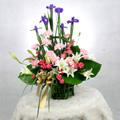 S.Korea Arrangement (Basket) S.Korea,,S.Korea:Carnation Basket-a9