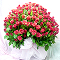 S.Korea Confession/Apology S.Korea,,S.Korea:200 Rose Basket