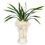 S.Korea Oriental Orchid S.Korea,,S.Korea:Kumhwasan