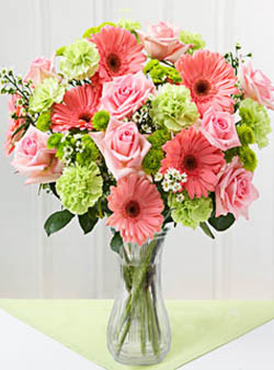 Philippines Flower Philippines Florist  Philippines  Flowers shop Philippines flower delivery online  :Pink Lollipop
