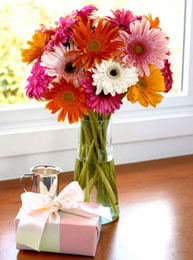 Philippines Get Well Philippines,:Gerbera Daisies Bouquet
