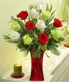 Philippines Flower Philippines Florist  Philippines  Flowers shop Philippines flower delivery online  :Shining Star