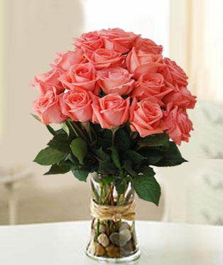 Philippines Roses Philippines,:Captivating