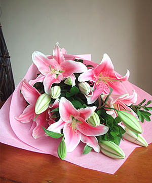 Philippines Flower Philippines Florist  Philippines  Flowers shop Philippines flower delivery online  :Tickled Pink