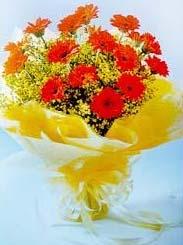 Livraison Fleurs Malaisie fleuriste Malaisie,fleurs de Malaisie Livraison fleurs Malaisie:LocalStreets:LOVELY