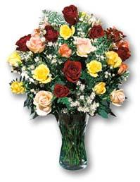 South Africa Flower South Africa Florist  South Africa  Flowers shop South Africa flower delivery online  ,South Africa:Mixed Rose Vase Arrangement