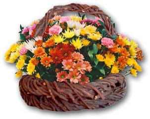 South Africa Flower South Africa Florist  South Africa  Flowers shop South Africa flower delivery online  ,South Africa:Mixed Flower Basket