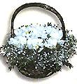 Turkey Get Well Turkey,:White freesia,chrizanteum.gypsophillia in basket