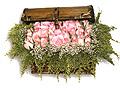 Turkey Flower Turkey Florist  Turkey  Flowers shop Turkey flower delivery online  :Pink roses group arrangement in wooden box
