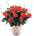 Turkey Flower Turkey Florist  Turkey  Flowers shop Turkey flower delivery online  :Red roses in seramic vase