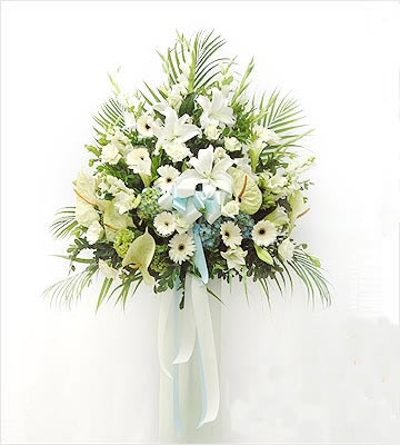 China Flower China Florist  China  Flowers shop China flower delivery online  ,China:Sympathy 21