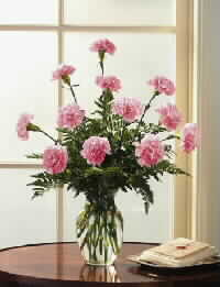 Ukraine Bouquet/Composition Ukraine,:11 Carnations