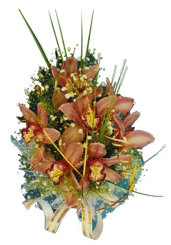 Ukraine Bouquet/Composition Ukraine,:Crazy in Love bouquet (orchids)