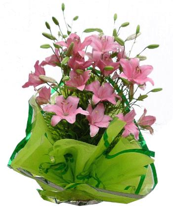 Ukraine Flower Ukraine Florist  Ukraine  Flowers shop Ukraine flower delivery online  :First Date 'Love is in the Air'