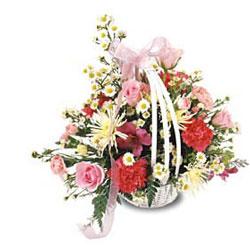 Livraison Fleurs Ukraine fleuriste Ukraine,fleurs de Ukraine Livraison fleurs Ukraine:LocalStreets:Special Day Basket