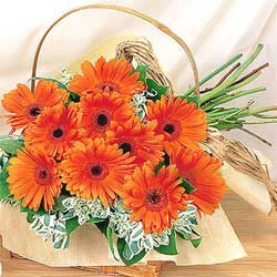 China Flower basket China,,China:Sincerely yours