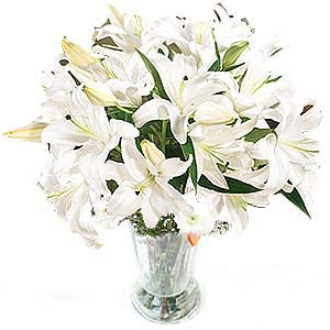 China Lilies China,,China:White Morning