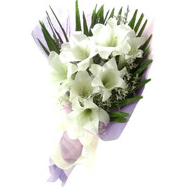 China Flower China Florist  China  Flowers shop China flower delivery online  ,China:Only Love