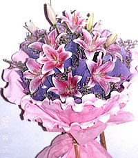 China Flower China Florist  China  Flowers shop China flower delivery online  ,China:Moon Light