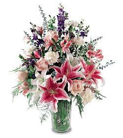 Z-Other Country Flowers Z-Other Country flower Z-Other Country florists :Star Gazer Bouquet