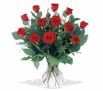 Happy BirthDay A Dozen Red Roses