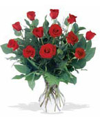 Antigua Birthday Antigua,:Happy BirthDay A Dozen Red Roses