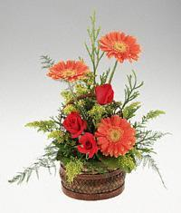 Bouquet gerberas and roses