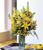Ecuador Flower Ecuador Florist  Ecuador  Flowers shop Ecuador flower delivery online  Ecuador:Burst of Yellow