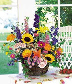 Latvia Flower Latvia Florist  Latvia  Flowers shop Latvia flower delivery online  Latvia:Summertime Sensation