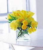 Sweden Contemporary Collection Sweden,:Sunshine Thoughts
