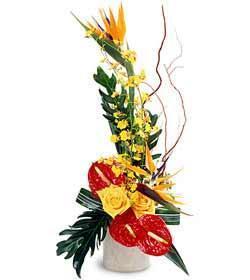 Exotic Flowers bouquet