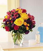 Bhutan Flower Bhutan Florist  Bhutan  Flowers shop Bhutan flower delivery online :Brighten Your Day
