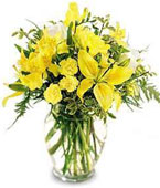 Swiss Get Well Swiss,:Your Special Day Bouquet