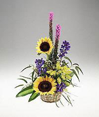 Georgia Flower Georgia Florist  Georgia  Flowers shop Georgia flower delivery online :Get well  and out and about