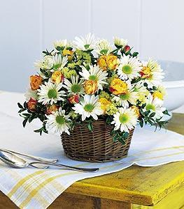 Joyful Roses and Daisies