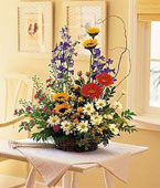 Nauru Flower Nauru Florist  Nauru  Flowers shop Nauru flower delivery online :Stylish Reflections