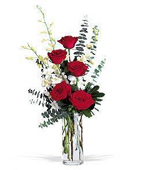Other Country Orchid Other Country,:Red   Roses and White Orchids