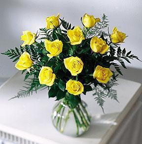Golden Yellow Rose