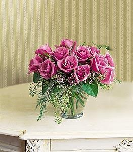 A Lavender Dozen Roses
