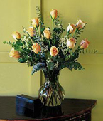 Micronesia Roses Micronesia,Other State:A Dozen Pale Peach  Roses