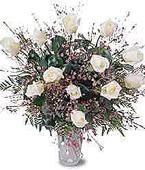 Micronesia Roses Micronesia,Other State:Eskimo roses