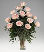 Other Country Roses Other Country,:Osiana peach Roses