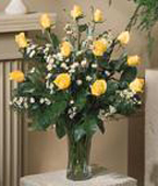 Greece Roses Greece,:Yellow Roses